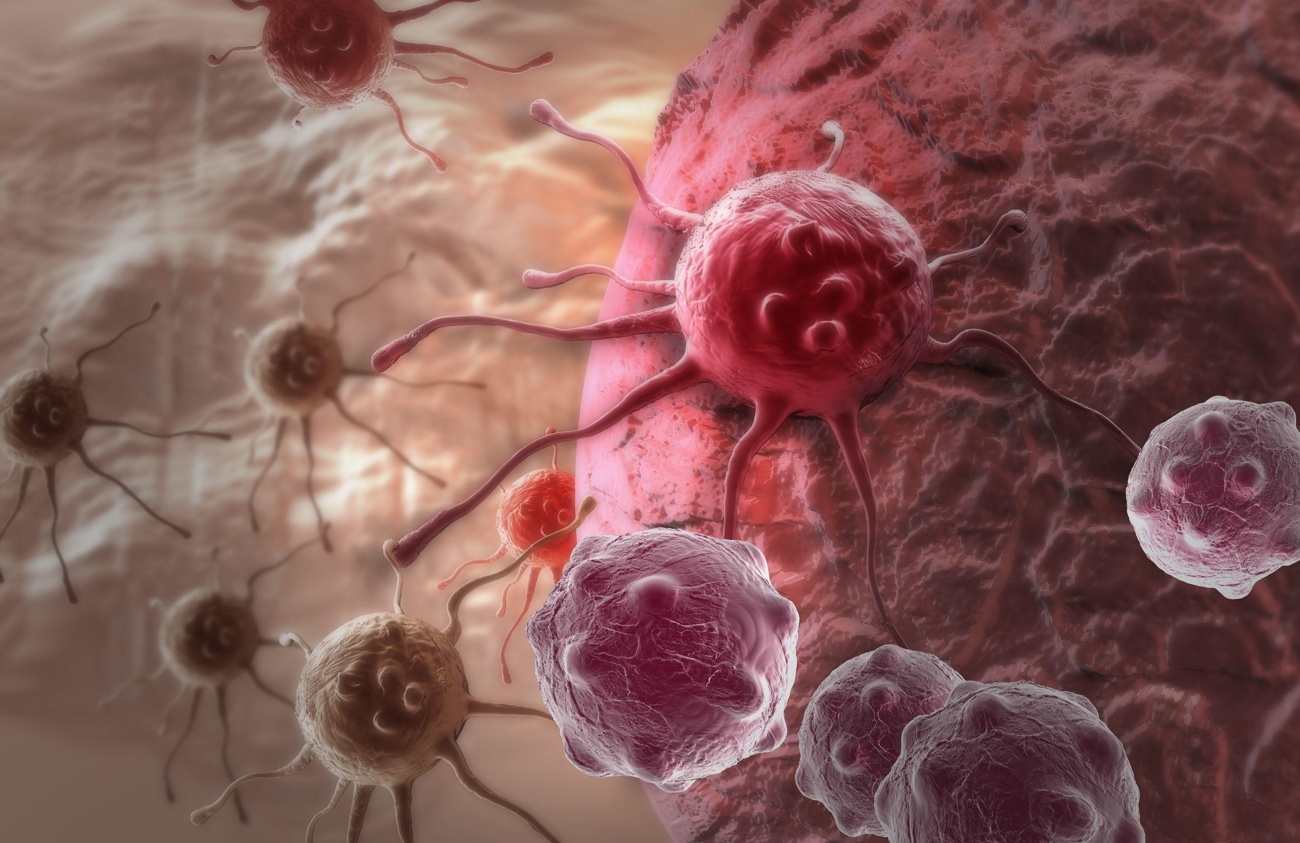 semana lucha contra el cáncer, la prevención es la clave,